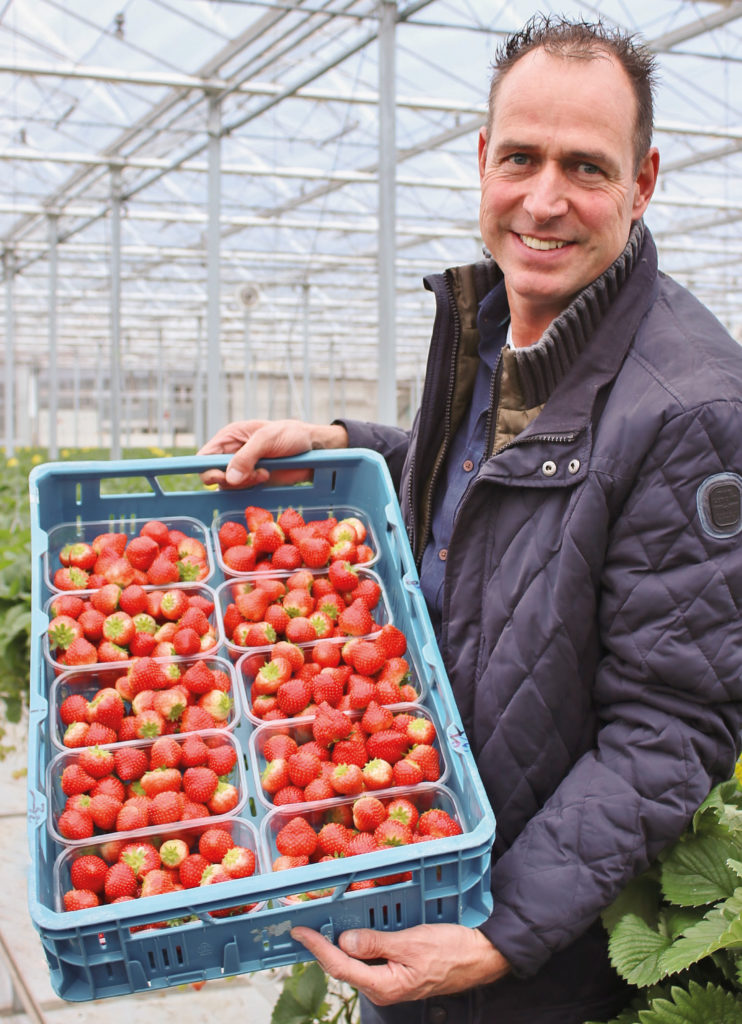 Soft fruits grower Thwan van Gennip