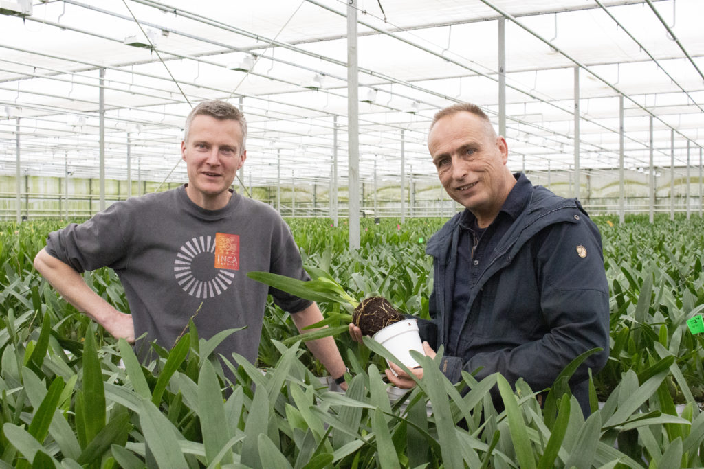 orchid grower André van der Goes Inca Orchids and BVB Substrates' representative John Noordam