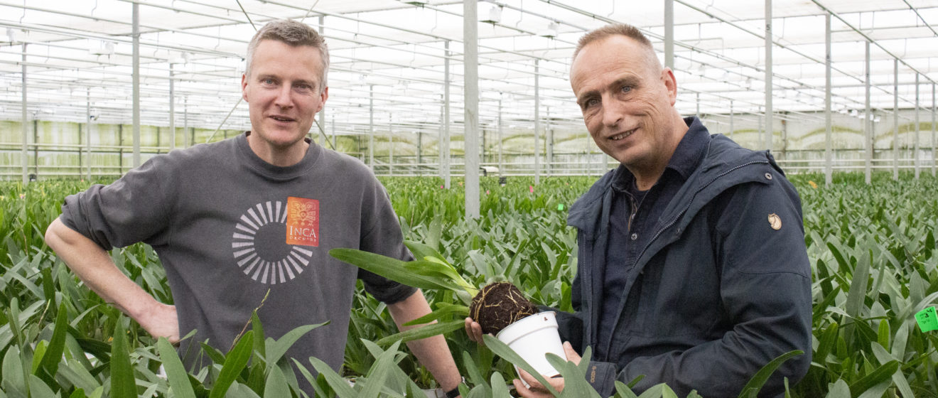 André van der Goes owner of Inca Orchids