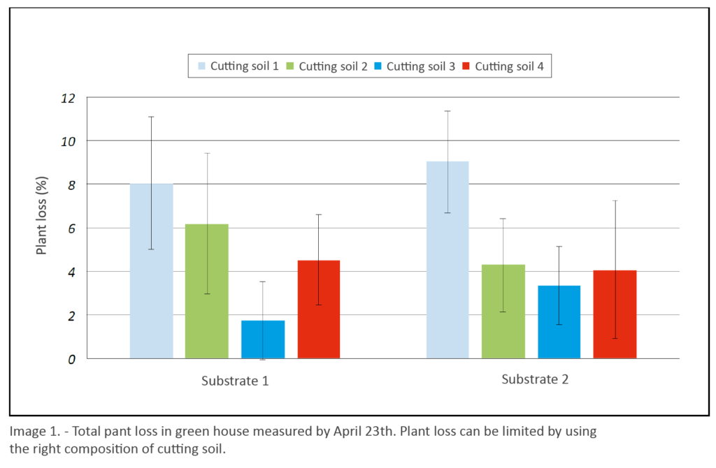 Results of test to determine the right substrate to fight phytophthora: chart of plant loss in greenhouse