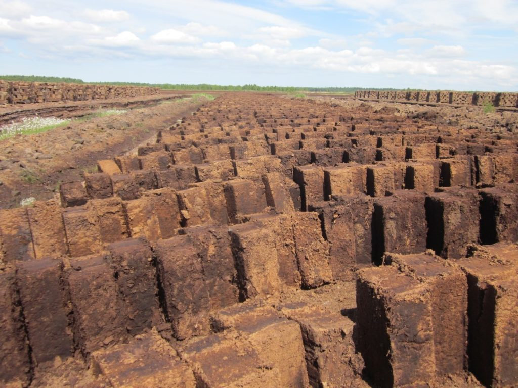 European block peat freshly harvested
