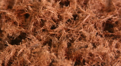 BVB Wood Fiber - wood fiber for growing media
