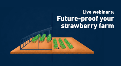Future-proof your strawberry farm webinars